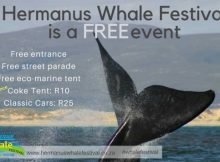 Hermanus Whale Festival 2018 - East Coast