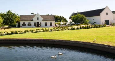Picnics at Hazendal Wine Estate - Stellenbosch