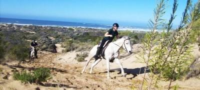 Seahorse Eco Safaris - Vleesbaai