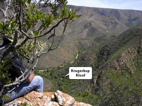 Krugerskopkloof Bushcamp