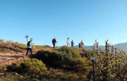 Driedag Wynwandel Robertsonvallei