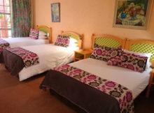 Hornbill-Lodge-BB-Accommodation-Magaliesburg-Gauteng